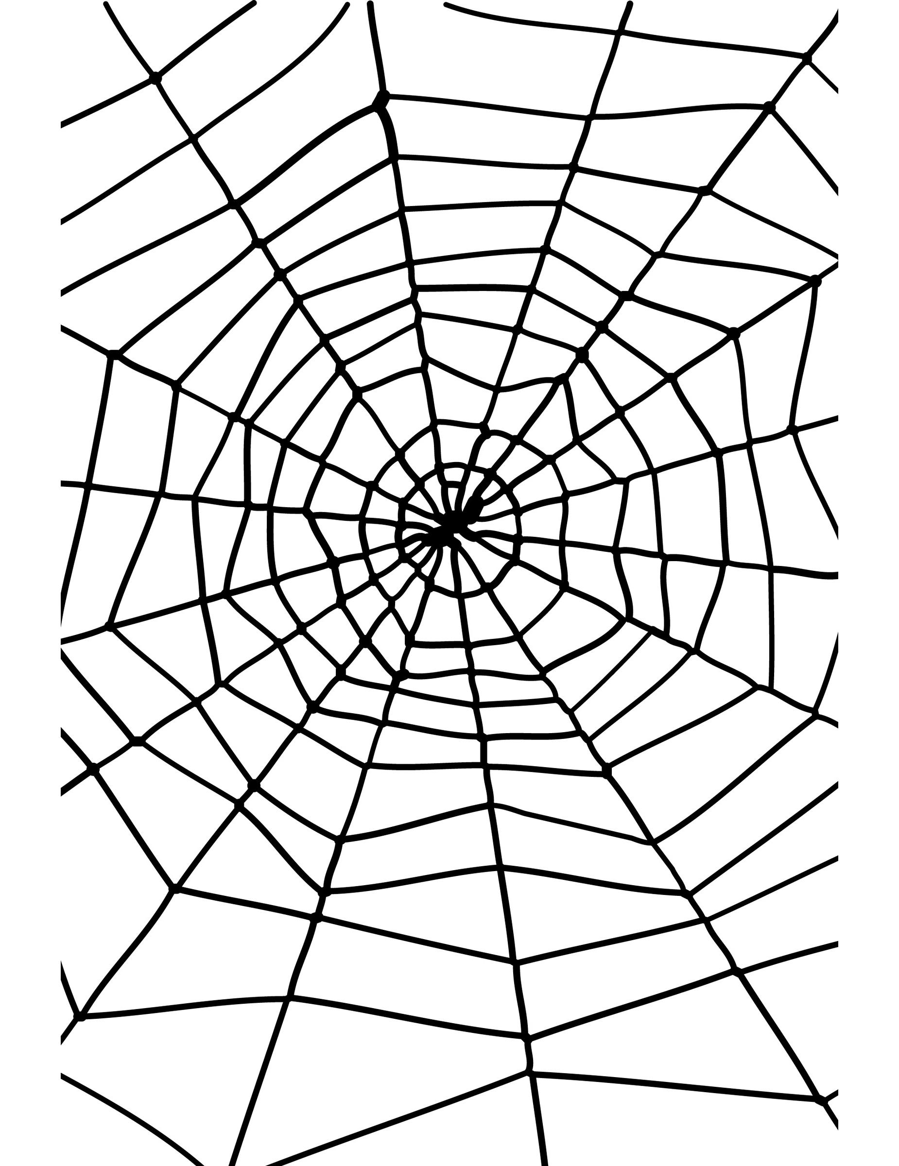 toile d 39 araign e halloween d coration anniversaire et. Black Bedroom Furniture Sets. Home Design Ideas