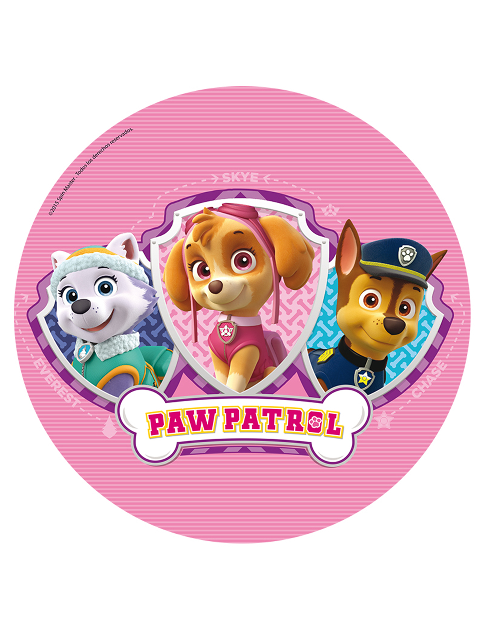 disques azyme 20 cm pat 39 patrouille paw patrol d coration anniversaire et f tes th me sur. Black Bedroom Furniture Sets. Home Design Ideas