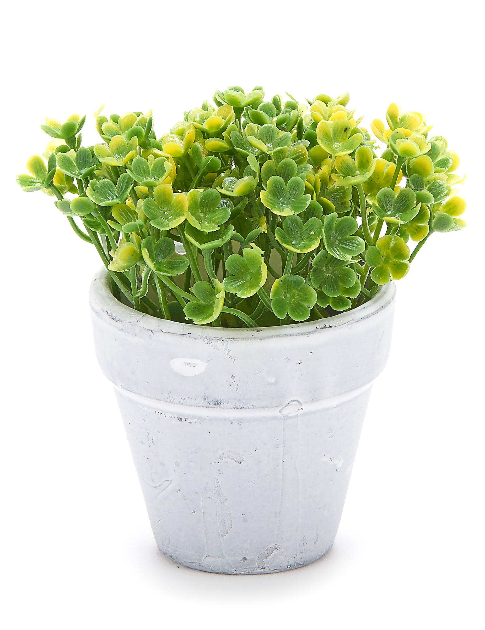 petit pot fleurs artificielles vert clair d coration anniversaire et f tes th me sur vegaoo party. Black Bedroom Furniture Sets. Home Design Ideas