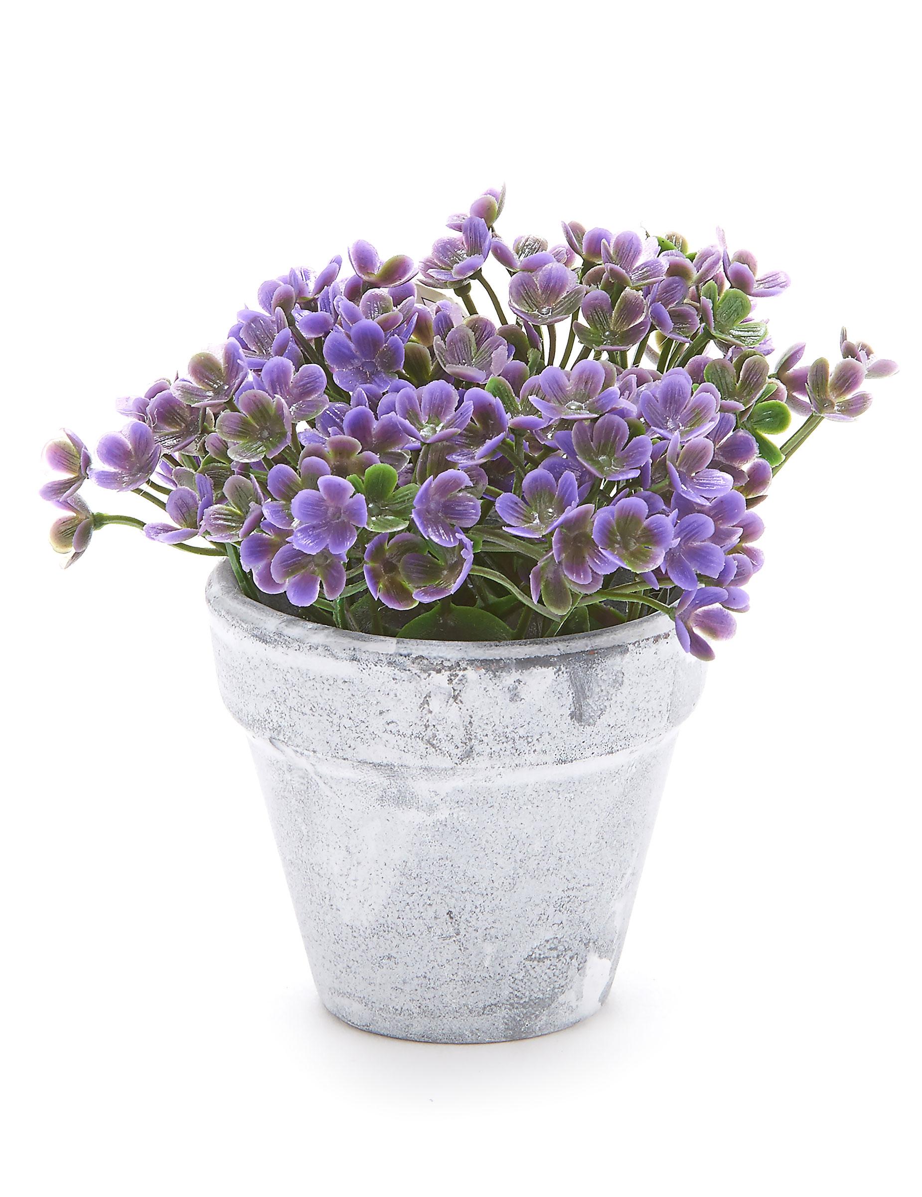 petit pot fleurs artificielles violettes d coration anniversaire et f tes th me sur vegaoo party. Black Bedroom Furniture Sets. Home Design Ideas