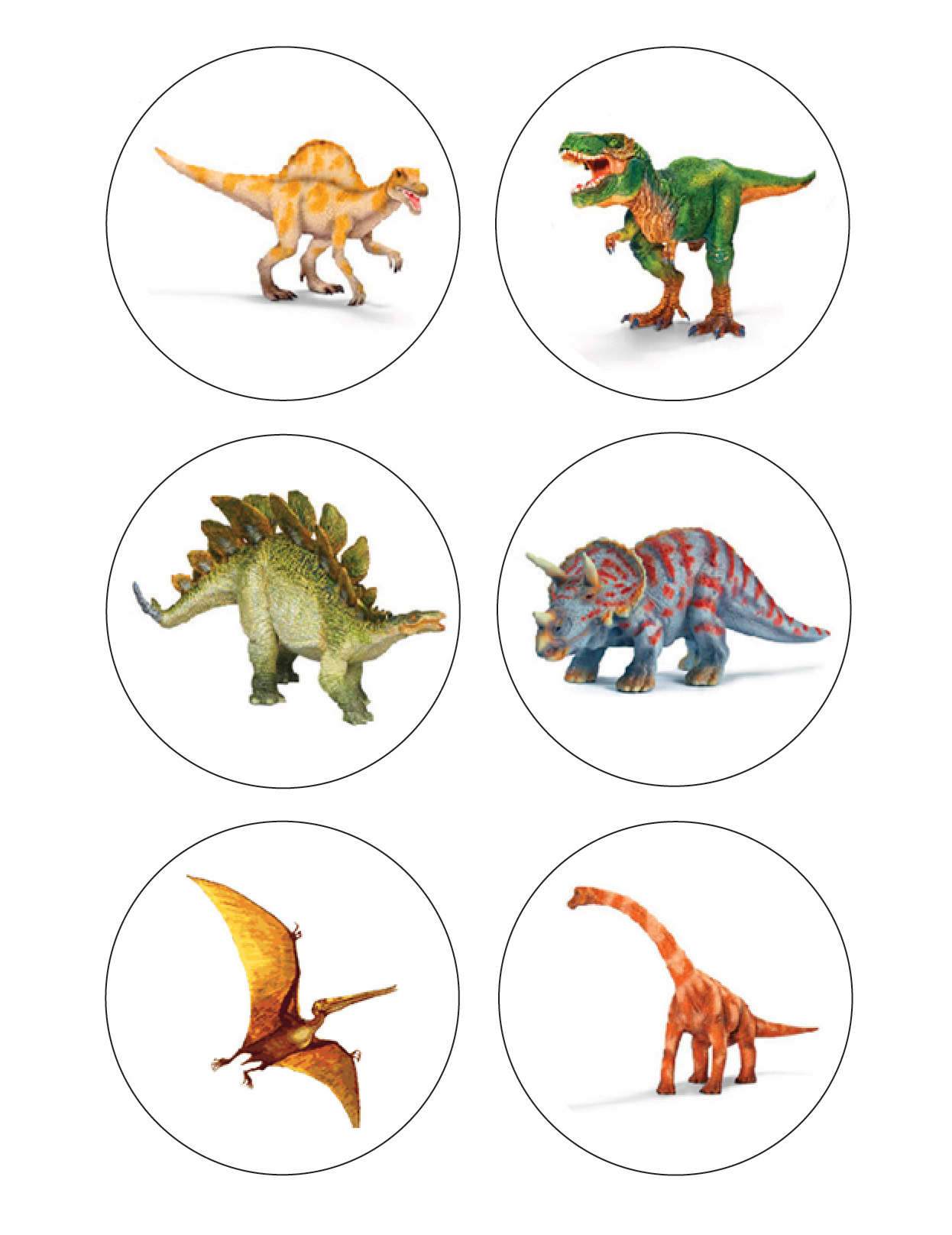 12 Mini disque en sucre Anniversaire Dinosaures ...